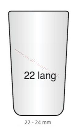 Lignīna korķis N⁰22.