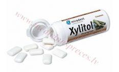 Košļājamā gumija Xylitol Cinnamon, 30gab.